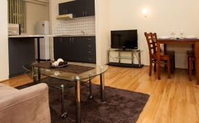 1 Bedroom Unit - Living Room and Kitchen Area